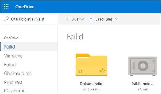 Kuvatõmmis erahoidlast OneDrive'i veebirakenduse failivaates