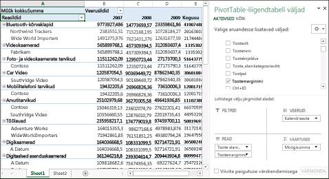 PivotTable-liigendtabel näidisandmetega