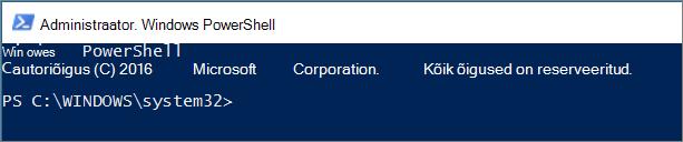 Selline näeb PowerShell välja pärast esimest käivitamist.