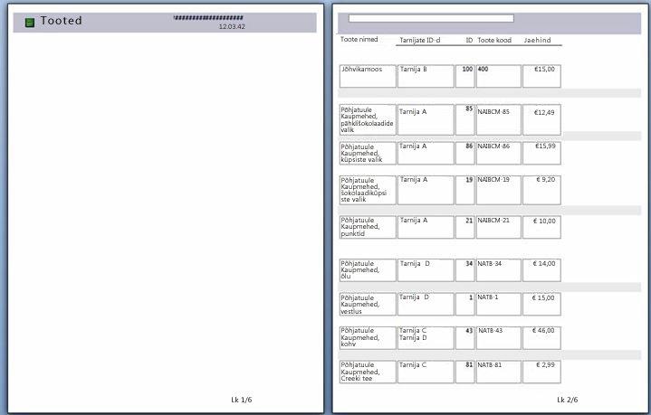 aruande lehekülgede eelvaade koos rakendatud leheküljepiiriga