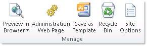 SharePoint Designer 2010 joonis