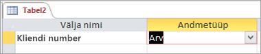 Uue Accessi tabeli esimese välja nimi ja andmetüüp