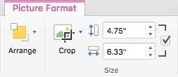 Office 2016 for Maci lindi nupp Crop (Kärbi) ning piltide väljad Shape Height (Kujundi kõrgus) ja Shape Width (Kujundi laius)