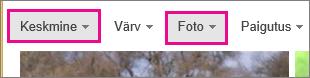 Bingi pildiotsingu tulemid, kus on filtreeritud keskmised suurusega fotod