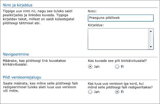 Dialoogiboks nime, skeemi, kiirkäivitusalale navigerimisvaliku ning versioonimise lisamiseks.