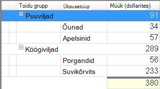 Rühmitatud sortimisega vaade, kus väärtused on summeeritud