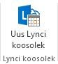 Lindil oleva ikooni Uus Lynci koosolek kuvatõmmis
