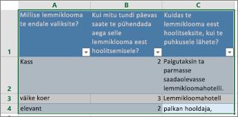 Küsitluse küsimuste ja vastuste printimiseks valige vastuseid sisaldavad lahtrid.