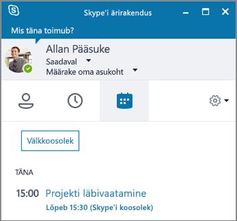 Skype'i ärirakenduse akna koosolekute menüü kuvatõmmis.