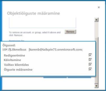 SharePoint Online'i dialoogiboksi Objekti õiguste seadmine kuvatõmmis. Selles dialoogis saate seada määratud välissisutüübi õigused.