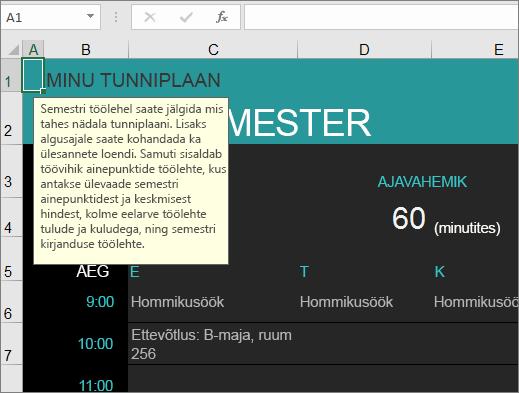 Uus üliõpilase kursusehalduri Exceli mall, kus on elementide kirjeldused.