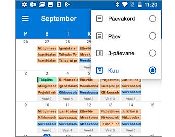 Kalender, kus on kuvatud kuupõhine vaade