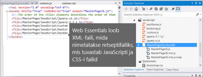 Kuvatõmmis JavaScripti ja CSS-i retseptifailist