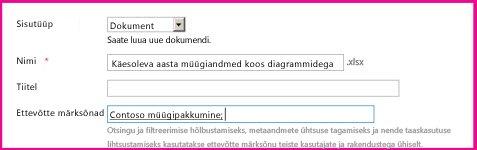 Kasutajad saavad märksõnu lisada dokumendi atribuutide dialoogiboksis