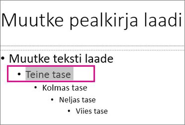 Juhtslaidi paigutus, kus on valitud teise taseme tekst