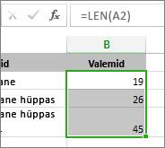 Funktsiooni LEN näide