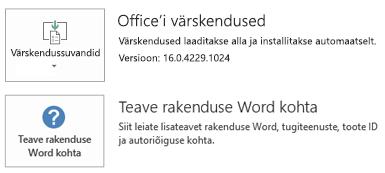 Kui Office on installitud klõpskäivitustehnoloogia abil, näeb rakenduse ja värskendustega seotud teabe jaotis välja selline.
