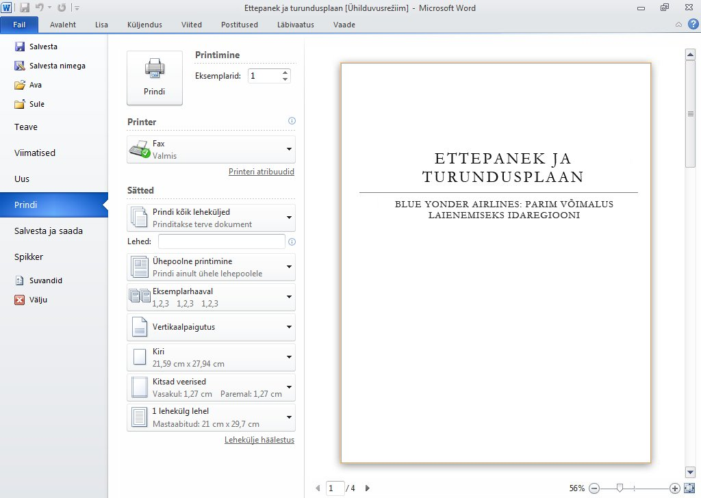 Document print preview