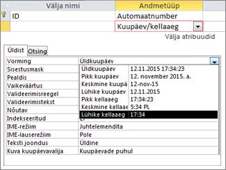 Välja Kuupäev/kellaaeg atribuut Vorming