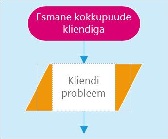 Skeemilehel asuva kahe kujundi kuvatõmmis. Üks kujund on teksti sisestamiseks aktiivne.