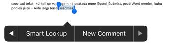 Puudutage nuppu Uus kommentaar pärast teksti valimine Wordis
