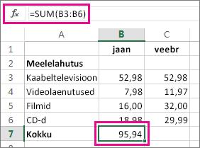 Automaatsumma näide tulemiga