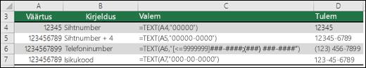 Funktsiooni TEXT erivormingud