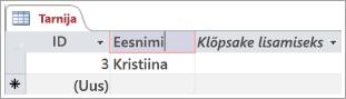 Ekraani väljavõte tarnija tabelist, kus on kuvatud kaks rida ID-ga