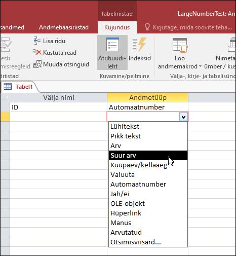 Kuvatõmmis andmetüüpide loendist Accessi tabelis. Valitud on tüüp Suur arv.
