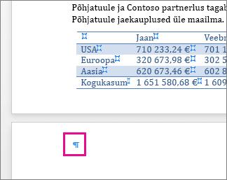 Tühi lõigumärk on lehel tabeli järel esile tõstetud