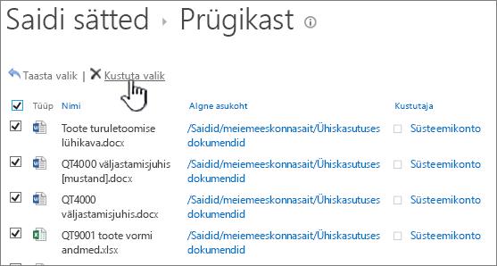 """SharePoint 2013 teise astme prügikast, kus on valitud kõik üksused ja esile tõstetud nupp """"Kustuta"""""""