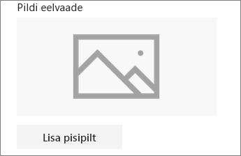 Pildi lisamiseks või redigeerimiseks klõpsake nuppu Lisa pisipilt või Muuda.