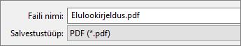Valige salvestustüübi loendiboksist PDF.
