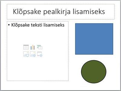 Kahe kohatäite ja kahe omaette objektiga slaid