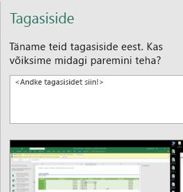 Tagasiside Exceli dialoogiboksis