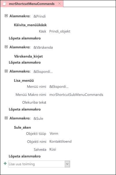 Accessi makro koos nelja submacros kuvatõmmis