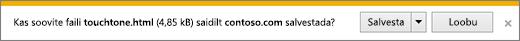 Internet Exploreri allalaadimisviip