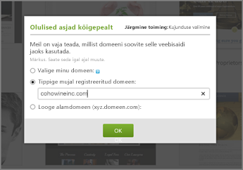 "Tippige domeeninimi GoDaddy lehel ""First things first"" väljale ""Type a domain registered elsewhere"""
