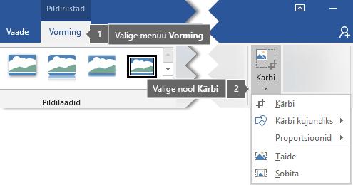 Nupp Kärbi menüü Pildiriistad alammenüüs Vorming