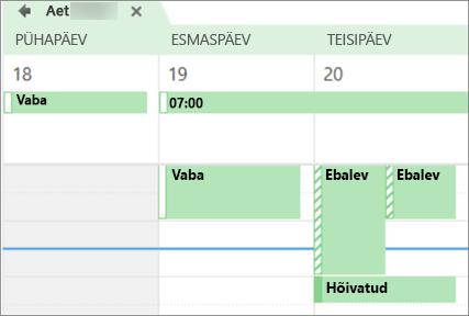 Kuidas oma kalender välja näeb isikule ühiskasutuses koos.