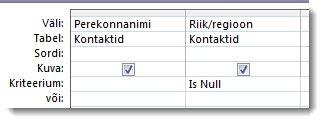 Pildil on kuvatud päringukujundaja nullkriteeriumidega kriteeriumiväli