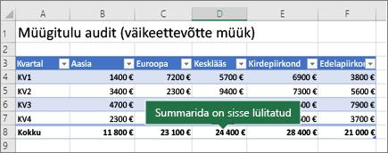 Exceli tabel, kus on summarida sisse lülitatud