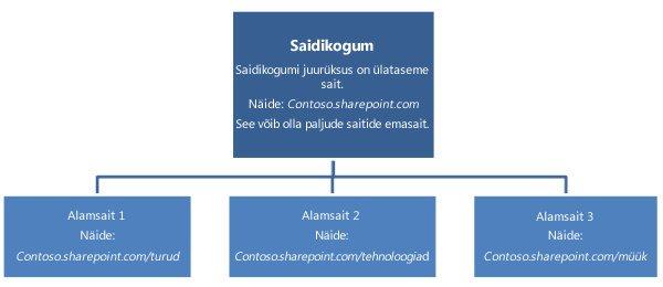 Saidikogumi hierarhiline skeem, kus on kuvatud ülataseme sait ja alamsaidid.
