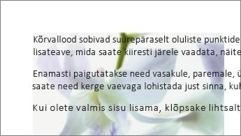 Näide: tekstiploki taga olev pilt