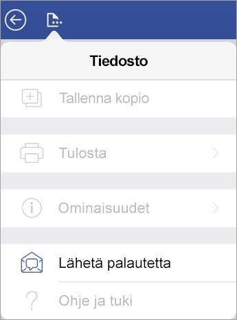 Näyttökuva Vision Lähetä palautetta -linkistä iPadissa
