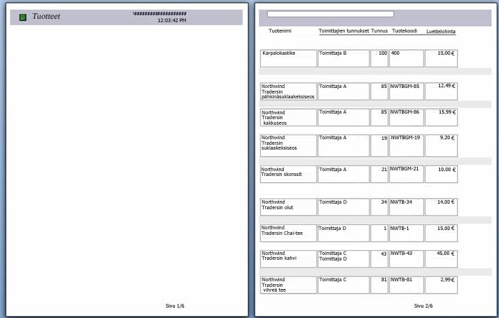 esikatselu raportin sivuista sivunvaihdolla
