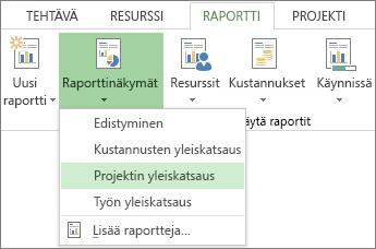 Raportti-välilehden Raporttinäkymät-valikko.