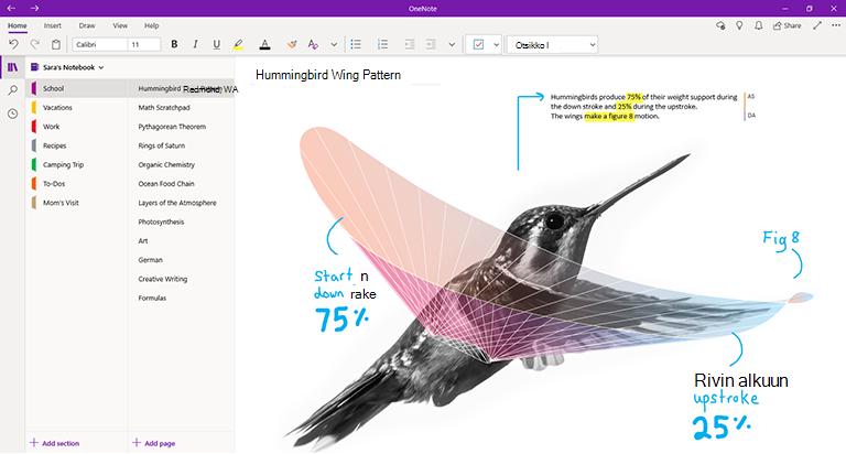 Näyttökuva OneNote for Windows 10:stä