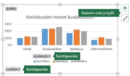 Pivot-kaavio, jonka selitteet osoittavat Kenttäpainikkeet- ja Kaaviotyökalut-kohtiin