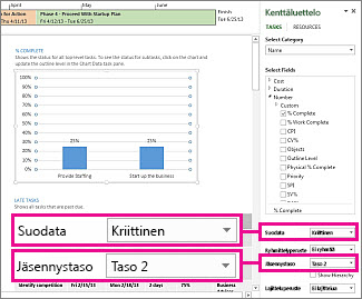 Projektin yleiskatsaus -raportti, jossa Kaavion tiedot -ruutu avoinna
